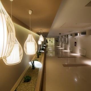 Hotel Lotus ambient