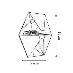 Dimensiuni Aplica Aline